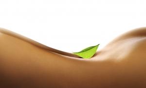 massagen_lehre_physiotherapie